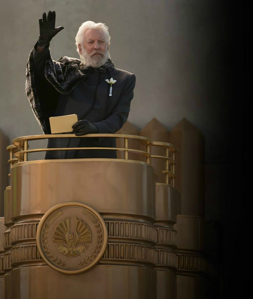 President Snow Catching Fire