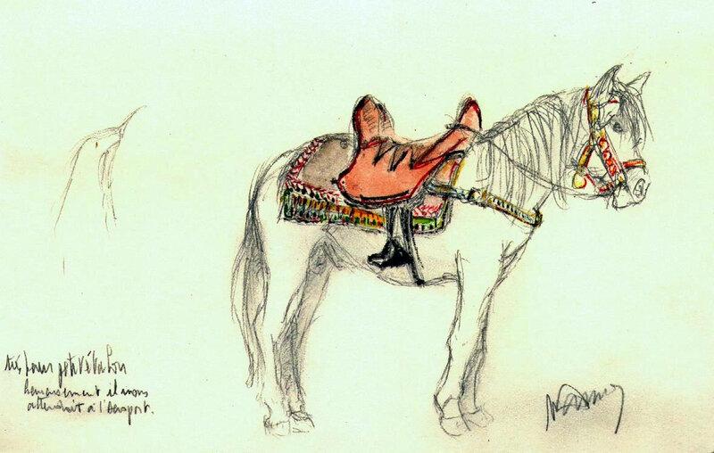 cheval couleur