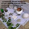 le puissant maitre marabout voyant medium africain fiogbe