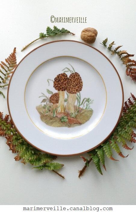 assiette aux Morilles - Création Marimerveille