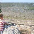 Le Bassin à marée basse