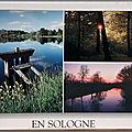 Sologne 1