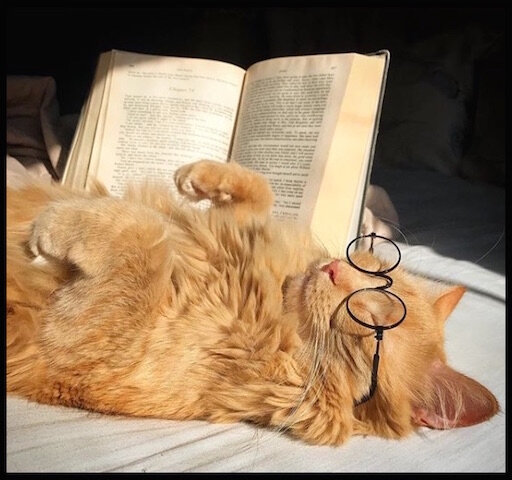 chat lecture