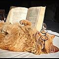 Texte à méditer - j'adore les chats... emile zola