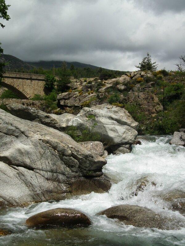 Pique-nique au bord de la rivière (39)