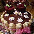 Gâteau vic 17 ans bis