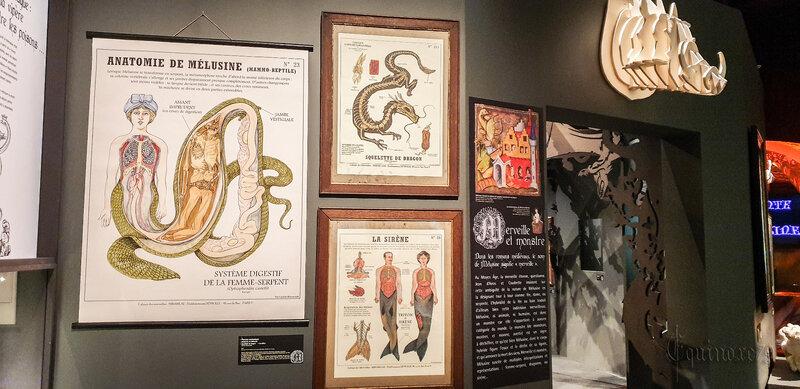 Mélusine, une fée féministe Mi-femme, mi-serpent, actuellement à l'exposition de l'historial de la Vendée et sur France Culture