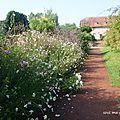 jardins ss limites17