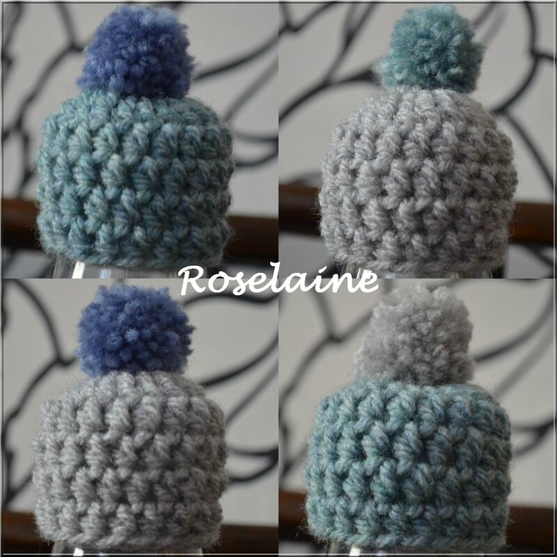 Roselaine Mets ton bonnet juin