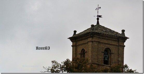 Rose63 (2)