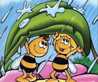 clim pluie AbeillesBPat