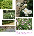 la_roseraie
