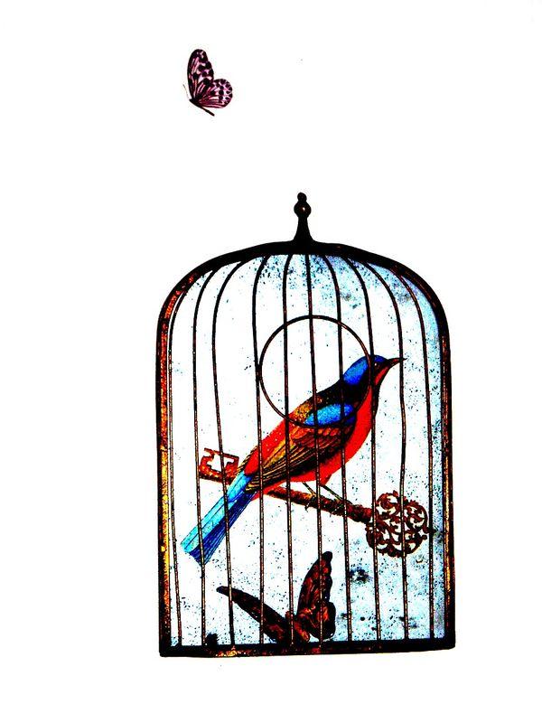 Dessin Oiseau En Cage cages : tous les messages sur cages - marimerveille