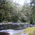 Vue picnic rando Catlins River