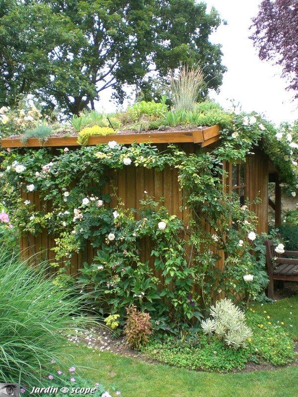 La cabane de jardin au toit végétalisé