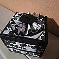 Boîte accordéon