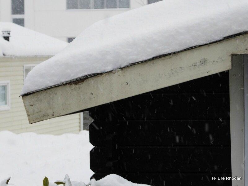 In neige toujours (3)