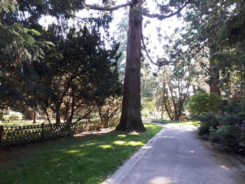 arboretum-Angers14