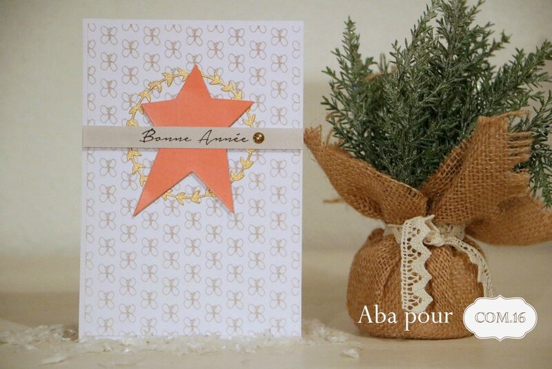 aba_com16_carte_voeux_suzie_etoile_orange_or_gris