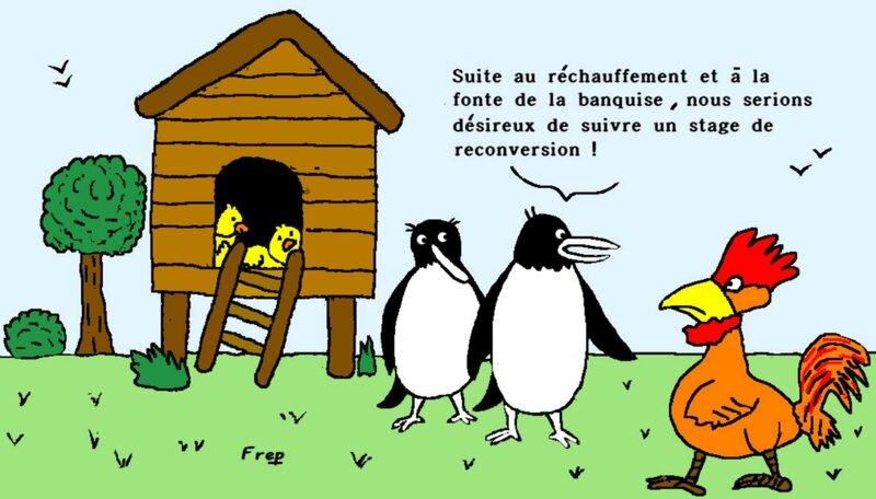 119- 20150610174444 Pingouins et poules reconversion 300dpi