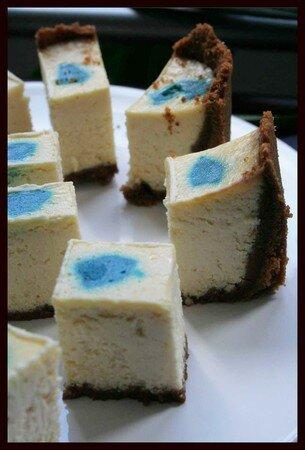 cheesecake_amande_seva_4