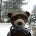 Mes astuces d'ours