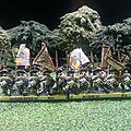 Brigade autrichienne de dos