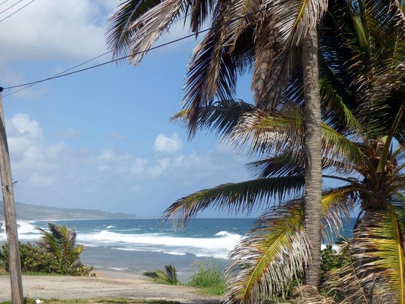 28 01 16 (La Barbade)090
