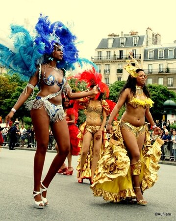 Martine Carnaval Tropical Paris 07