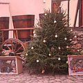 Haut-Rhin - Eguisheim