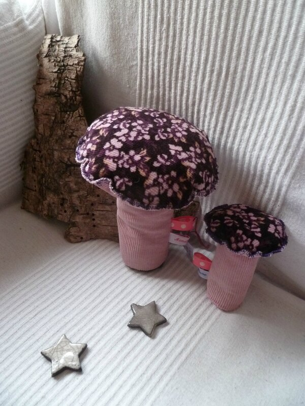 champignons 004