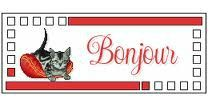 bj chat deco rouge