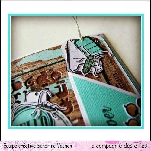 Carte et marque page Sandrine VACHON dt LCDE (5)