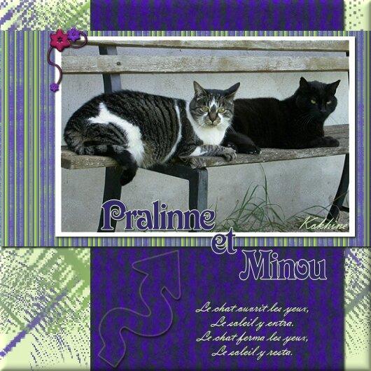 Pralinne et Minou