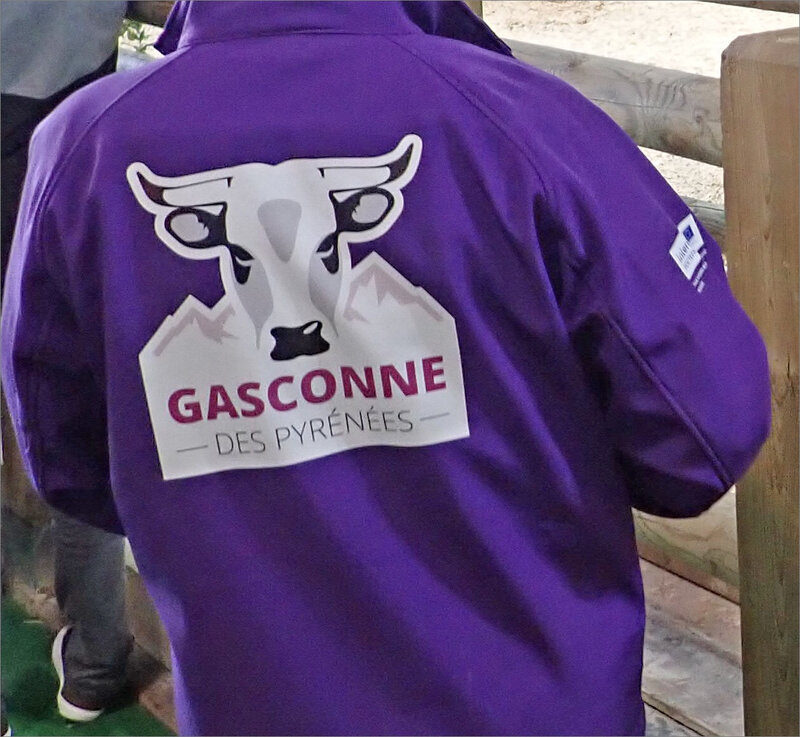 salon agriculture 2019 ym 10 pull Gasconne