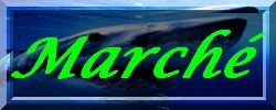 cadre_march_