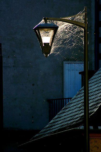 2008_09_21_Blois_2301b_v