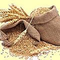 Nogent-le-républicain le 25 mars 1795 : ravitaillement en grains.