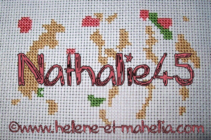 nathalie45_saldec13_2