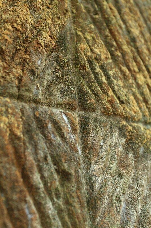 Pétroglyphes du Mahury