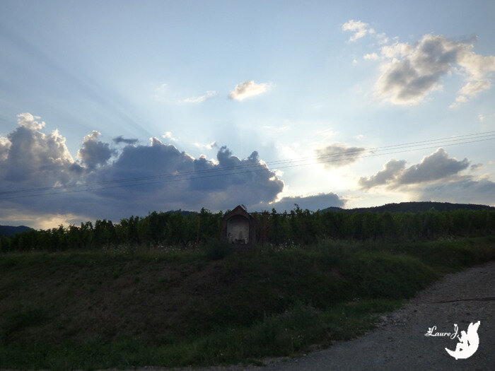 nuage chat Alsace