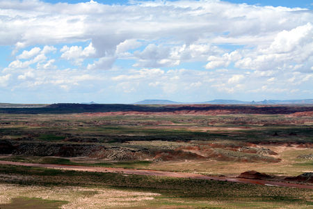Petrified_Forest_27