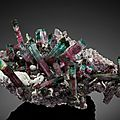 Tourmaline with quartz and albite on lepidolite, Big Beauty