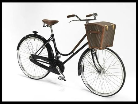 moynat malle a bicyclette 1