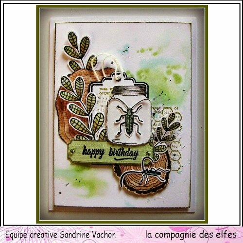 Janv dt LCDE carte HAPPY BIRTHDAY (1)