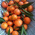 Le goût de la première mandarine