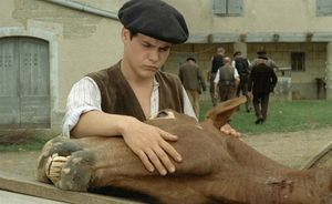 a_Louis_Malle_Lacombe_Lucien_Criterion_DVD_PDVD_007
