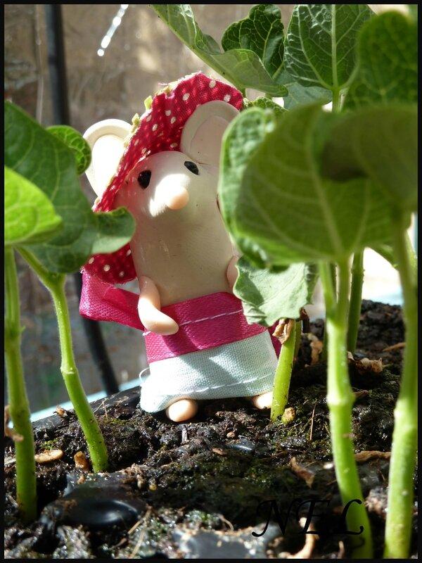 Nel au jardin (16)
