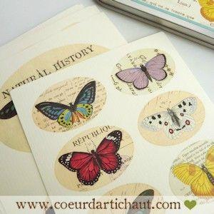 planches-de-stickers-retro-cavallini-papillons3