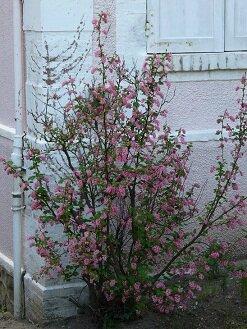 Blog 17-04-15 12